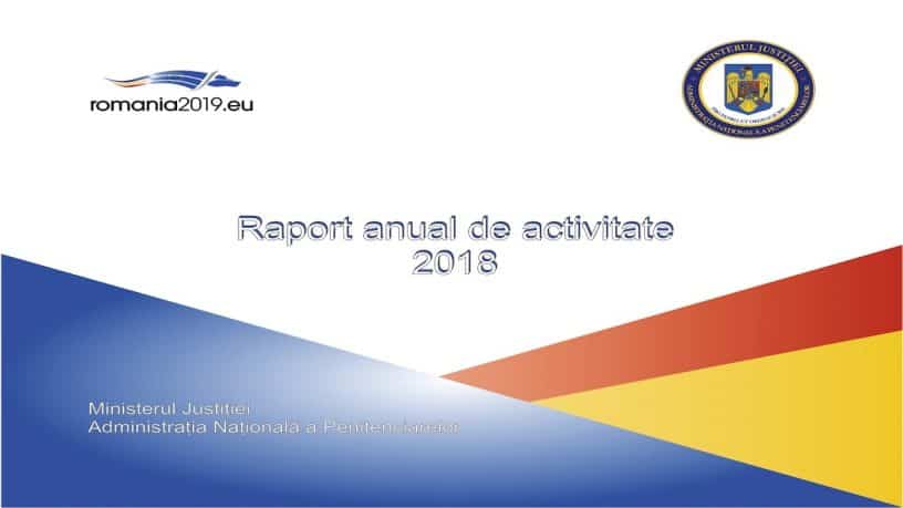 Raport-activitate-ANP-2018